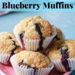 Skinny Vegan Blueberry Muffins